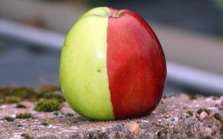 Half green and red apple.